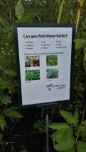 Herb Garden in Todmorden