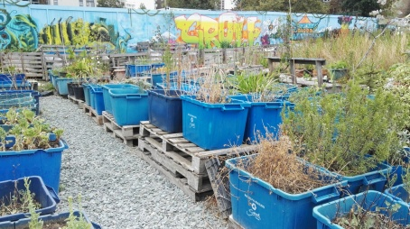 Growing Containers