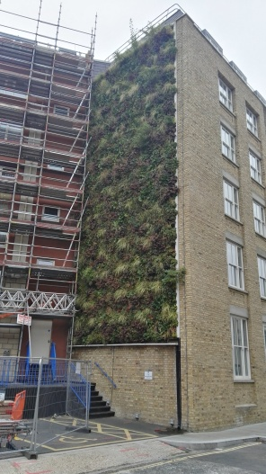 Living Wall on Holiday Inn