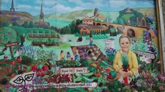 Pollination Street mural Todmorden
