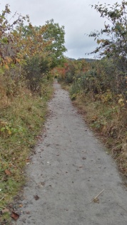 Path towards Clachnaharry