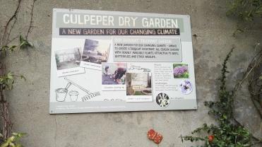 Culpeper Dry Garden