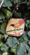Culpeper Community Garden Robin