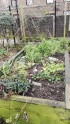 Culpeper Community Garden Raised beds