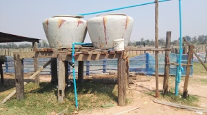Water catchment & irrigation system