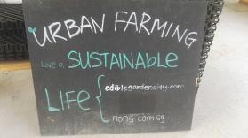Urban farming Singapore