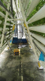 Hydroponics and vertical farming Comcrop Singapore