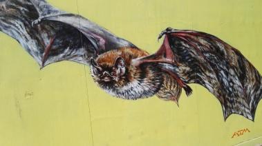 bat mural