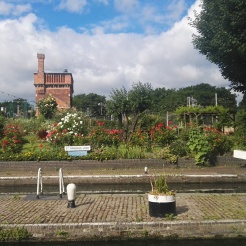 St Pancras Lock Garden