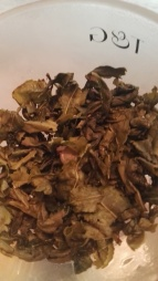 Leaves after 2nd infusion