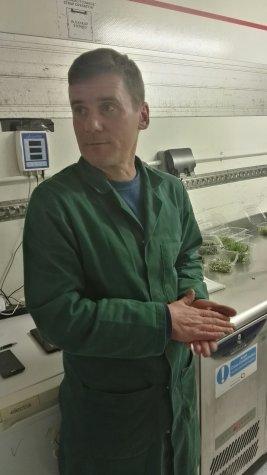 Dermot Grow Bristol