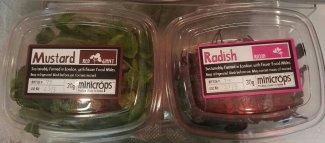 Mustard and radish