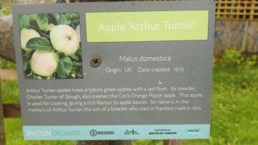 Apple Arthur Turner
